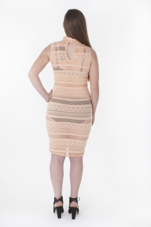Stylish Mesh Bodycon Dress