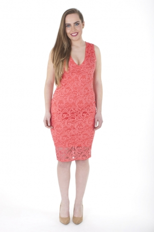 Stylish V Neck Lace Bodycon Dress