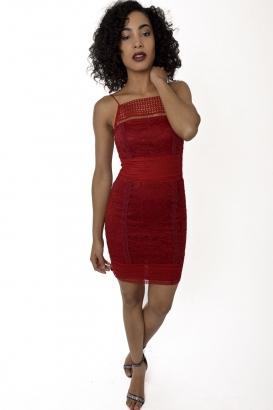 Stylish Cami Insert Lace Dress