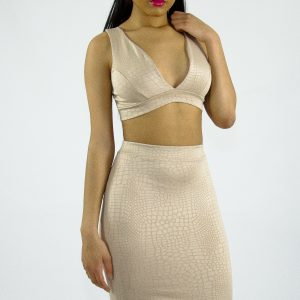 Stylish Two Piece Set Skirt and Top