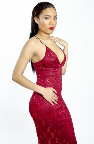 Stylish Sequin and Lace Midi Bodycon Dress