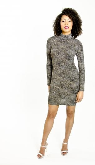 Stylish Long Sleeve Glitter Mini Dress