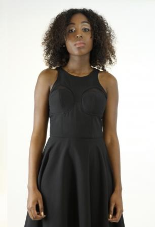Stylish Sheer Detail Skater Dress