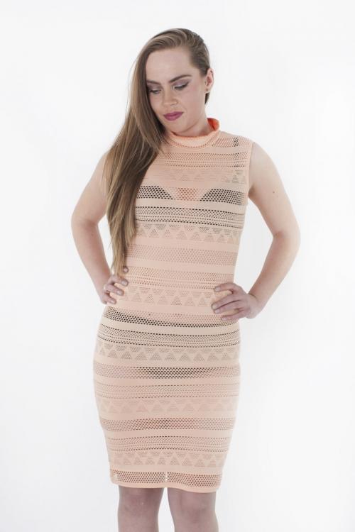 Stylish Mesh Bodycon Dress