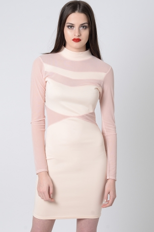 Stylish Mesh Long Sleeve Bodycon Dress