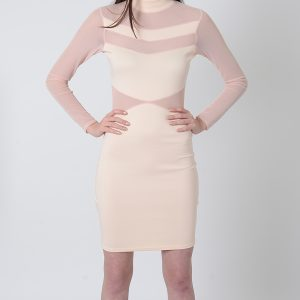 Stylish Mesh Long Sleeve Bodycon Dress
