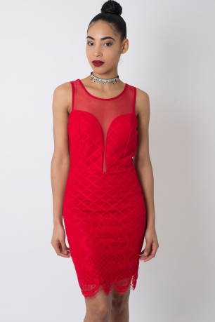 Stylish Plunge Lace Bodycon Dress