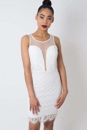 Stylish Plunge Lace Bodycon Dress
