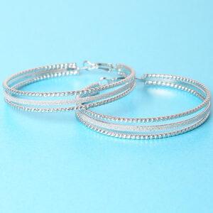 Stylish Double Silver Hoop Earrings